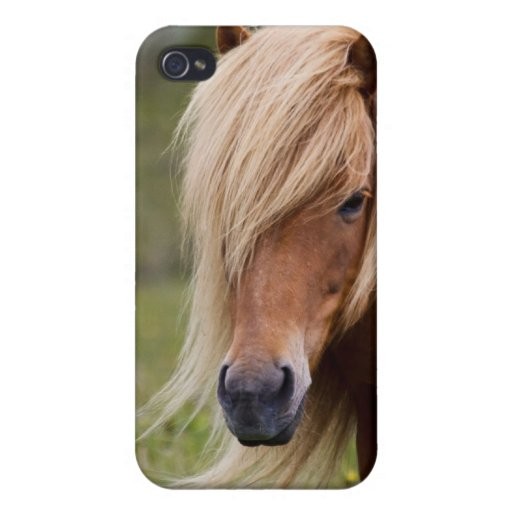 Icelandic Foal Case For iPhone 4