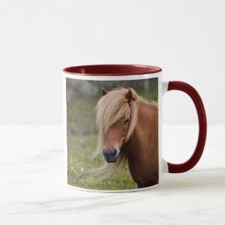 Icelandic Foal Mug