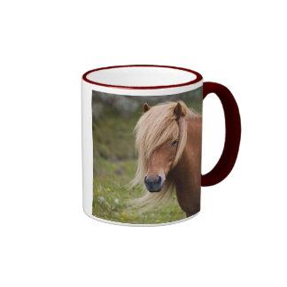 Icelandic Foal Ringer Mug