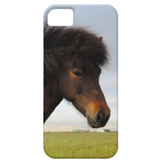 Icelandic Horse iPhone 5 Cases