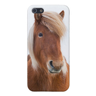 Icelandic Horse during winter  2 Case For iPhone SE/5/5s