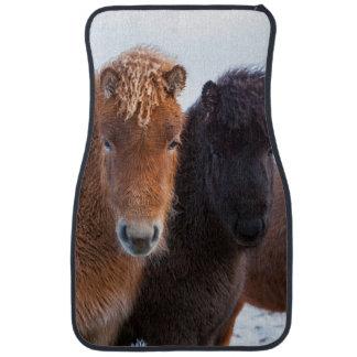 Icelandic Horse during winter on Iceland 2 Car Mat