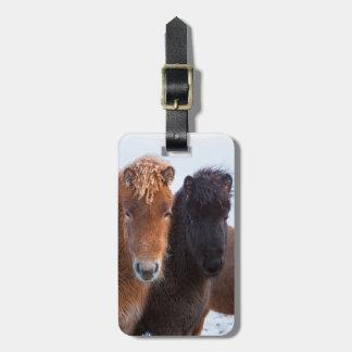 Icelandic Horse during winter on Iceland 2 Luggage Tag