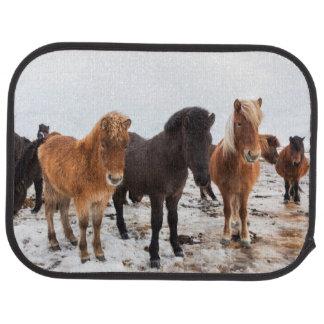 Icelandic Horse during winter on Iceland Car Floor Mat