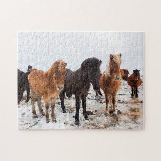 Icelandic Horse during winter on Iceland Jigsaw Puzzle