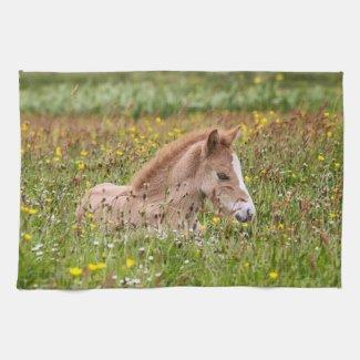 Icelandic Horse Foal Kitchen Towel