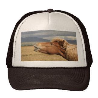 Icelandic horse Hat