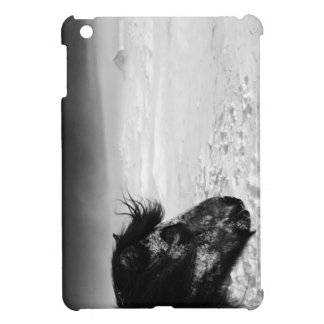 Icelandic horse in winter wilderness cover for the iPad mini