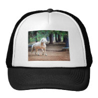 Icelandic Horse Mesh Hats