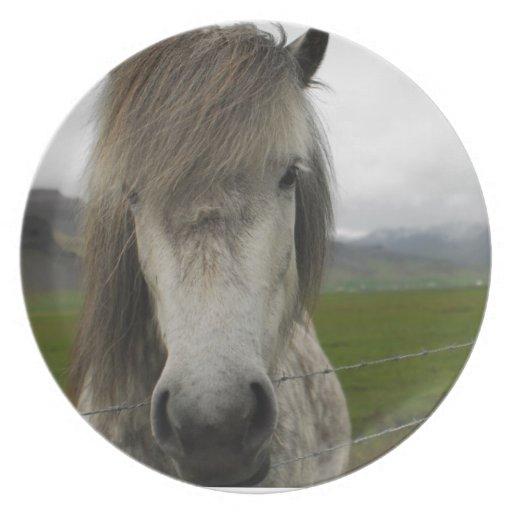 Icelandic Horse Plate