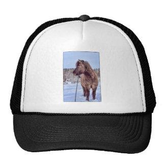 Icelandic Horse Power Trucker Hat