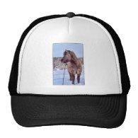 Icelandic Horse Power Hats