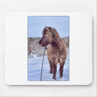 Icelandic Horse Power Mouse Pad