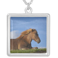 Icelandic horse resting and sky pendant