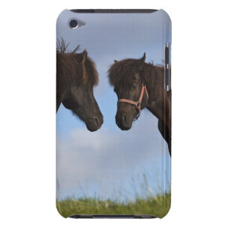 Icelandic horses facing each other barely there iPod case