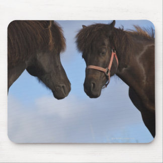 Icelandic horses facing each other mouse pad