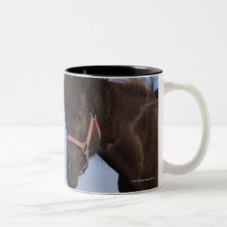 Icelandic horses facing each other Two-Tone coffee mug