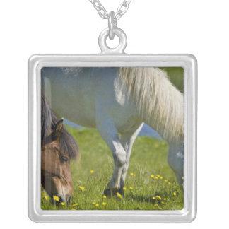 Icelandic Horses in western Iceland Custom Jewelry