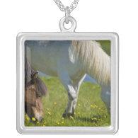 Icelandic Horses in western Iceland. Custom Jewelry