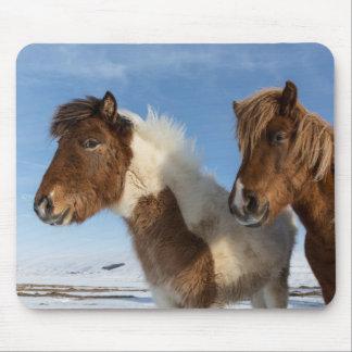 Icelandic horses mouse pad