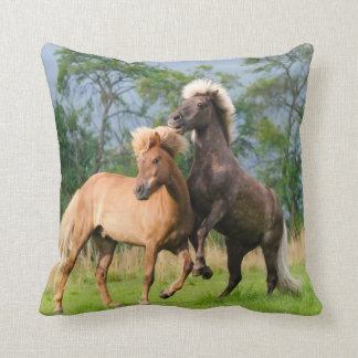 Icelandic horses playing and rearing pillow