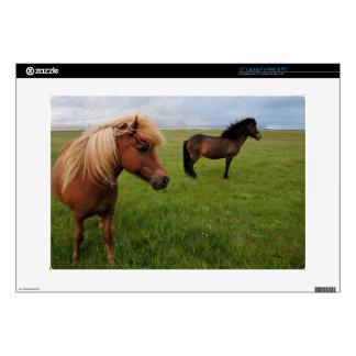 "Icelandic Horses 15"" Laptop Decal"