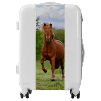 Icelandic Pony at a Tölt Funny Photo Horse Lovers Luggage