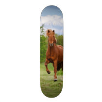 Icelandic Pony Runs Tölt Funny Photo Horse Lovers Skateboard Deck