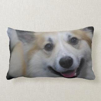 icelandic-sheepdog-4.jpg cojin