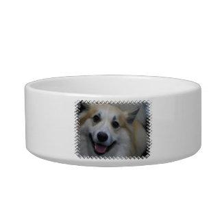 Icelandic Sheepdog Pet Bowl