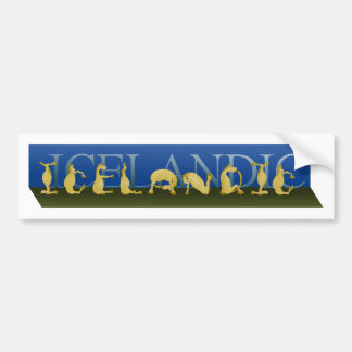 Icelandic written in ponies bumper sticker