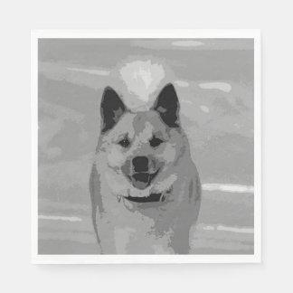 IcelandicSheepdog20151203 Servilleta De Papel