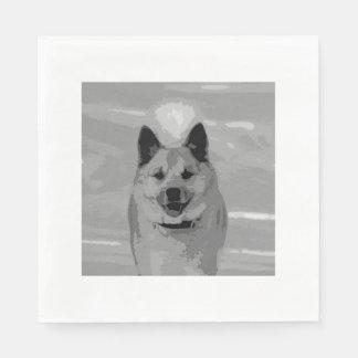 IcelandicSheepdog20151203 Servilletas De Papel
