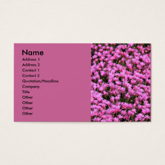 Iceplant Business Card
