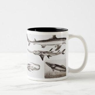 Ichthyology- Elasmobranch, Ganoid Two-Tone Coffee Mug