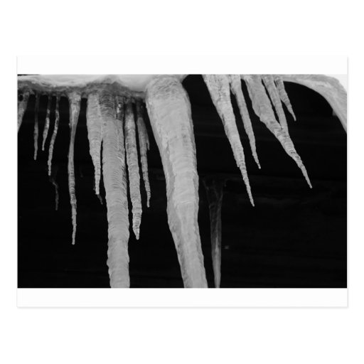 """""""icicles"""" by Coressel Productions Postcard"""