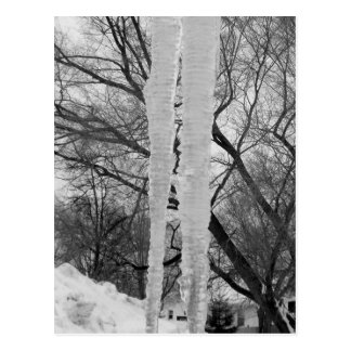 Icicles Post Cards