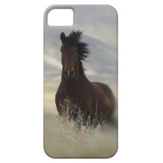 Iconic iPhone 5 Cases