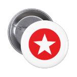 Icono rojo de la estrella pins