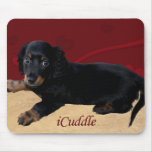 iCuddle Long Hair Dachsund Mouse Pad