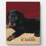 iCuddle Long Hair Dachsund Plaque