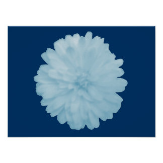 Icy Blue Marigold Poster
