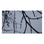 Icy Branches Abstract Winter Nature Photography Poster