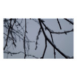 Icy Branches II Abstract Winter Nature Photography Poster