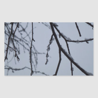 Icy Branches II Abstract Winter Nature Photography Rectangular Sticker