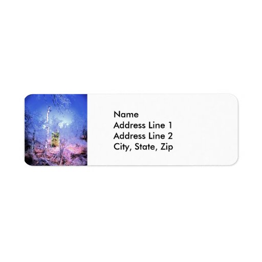 Icy Dead Tree with Evergreen Return Address Labels