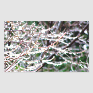 Icy Dogwood Rectangular Sticker