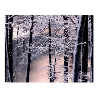 Icy Lake Postcard