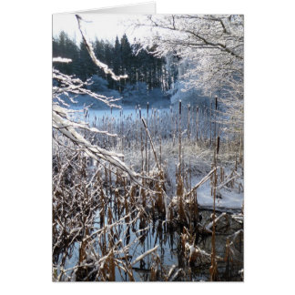 icy landscape card