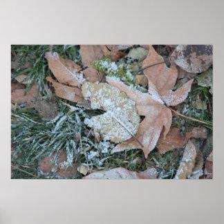 Icy Leaf Print